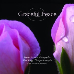 Tami Briggs, Musical Reflections, Graceful Peace DVD